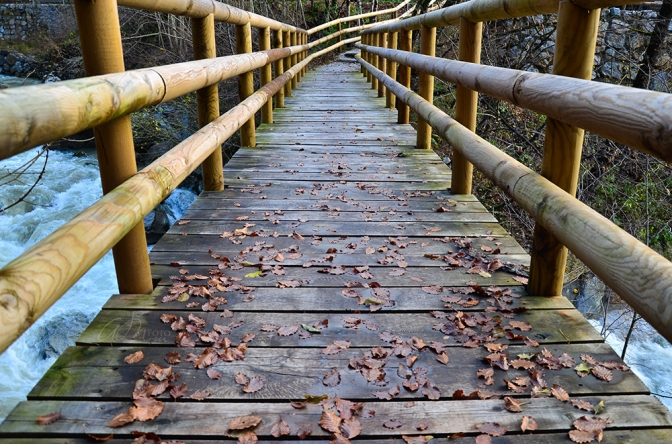 Beautiful Bridge and Fallen Leaves in Dovžanova Soteska, Slovenia