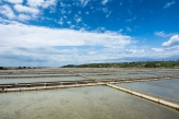 Endless Salt Pans in Sečovlje