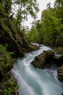 Beautiful Rapids in Soteska Vintgar