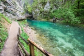 Slower Part of Radovna river
