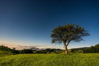 Under the Beautiful Stars at Podvrh